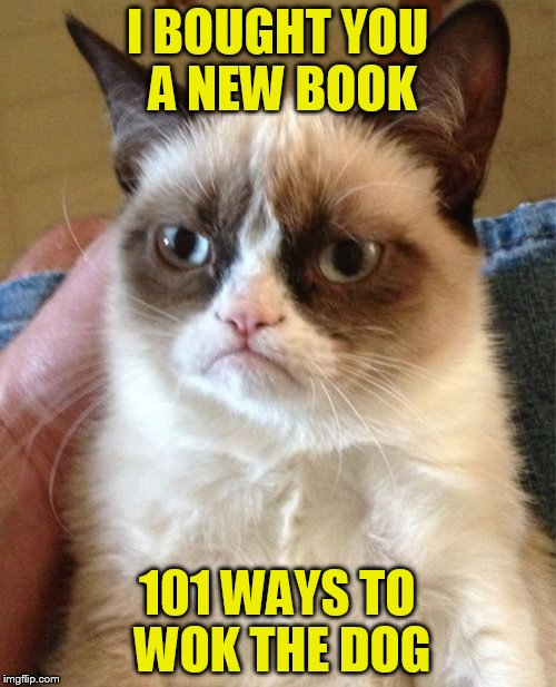 Grumpy Cat Meme | I BOUGHT YOU A NEW BOOK 101 WAYS TO WOK THE DOG | image tagged in memes,grumpy cat | made w/ Imgflip meme maker
