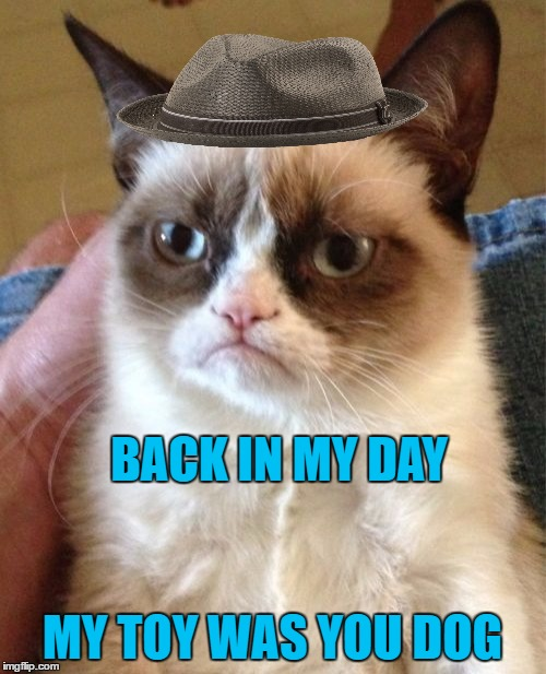 Grumpy Cat Meme | BACK IN MY DAY MY TOY WAS YOU DOG | image tagged in memes,grumpy cat | made w/ Imgflip meme maker