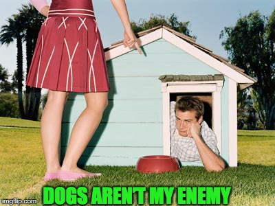 DOGS AREN'T MY ENEMY | made w/ Imgflip meme maker