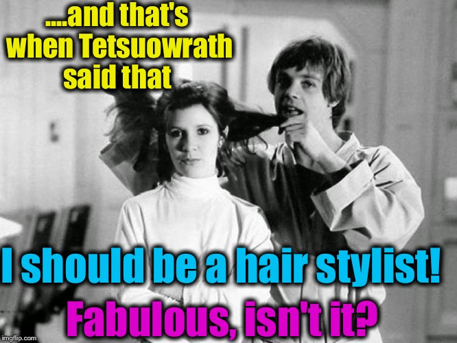 ....and that's when Tetsuowrath said that I should be a hair stylist! Fabulous, isn't it? | made w/ Imgflip meme maker