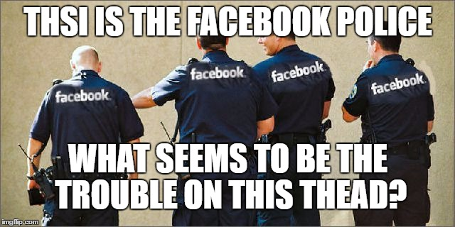 facebook police | THSI IS THE FACEBOOK POLICE WHAT SEEMS TO BE THE TROUBLE ON THIS THEAD? | image tagged in facebook police,fb,police,cops,internet | made w/ Imgflip meme maker