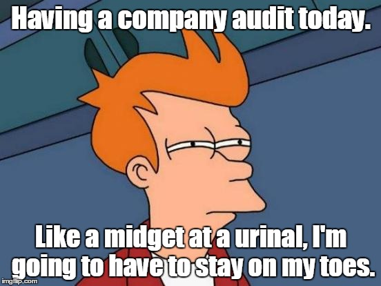 Futurama Fry Meme | Having a company audit today. Like a midget at a urinal, I'm going to have to stay on my toes. | image tagged in memes,futurama fry | made w/ Imgflip meme maker