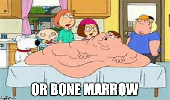 OR BONE MARROW | made w/ Imgflip meme maker