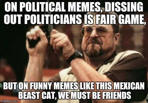 Am I The Only One Around Here Meme | ON POLITICAL MEMES, DISSING OUT POLITICIANS IS FAIR GAME, BUT ON FUNNY MEMES LIKE THIS MEXICAN BEAST CAT, WE MUST BE FRIENDS | image tagged in memes,am i the only one around here | made w/ Imgflip meme maker