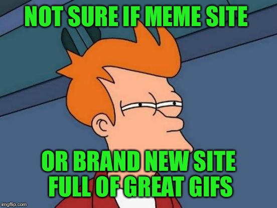 There are some great GIFs floating around this place lately!  | NOT SURE IF MEME SITE OR BRAND NEW SITE FULL OF GREAT GIFS | image tagged in memes,futurama fry | made w/ Imgflip meme maker