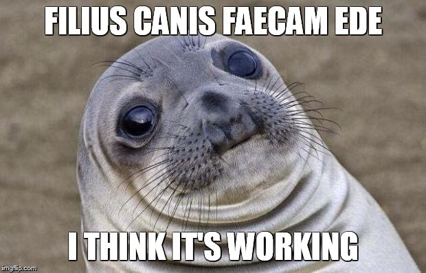 Awkward Moment Sealion Meme | FILIUS CANIS FAECAM EDE I THINK IT'S WORKING | image tagged in memes,awkward moment sealion | made w/ Imgflip meme maker