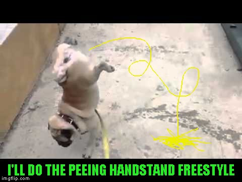 I'LL DO THE PEEING HANDSTAND FREESTYLE | made w/ Imgflip meme maker