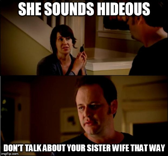 State Farm sister wife | SHE SOUNDS HIDEOUS DON'T TALK ABOUT YOUR SISTER WIFE THAT WAY | image tagged in army chick state farm,polygamy,mormon,sister wife | made w/ Imgflip meme maker