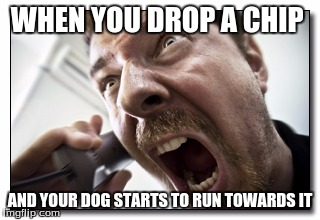 Shouter | WHEN YOU DROP A CHIP AND YOUR DOG STARTS TO RUN TOWARDS IT | image tagged in memes,shouter | made w/ Imgflip meme maker