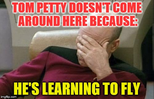 Captain Picard Facepalm Meme | TOM PETTY DOESN'T COME AROUND HERE BECAUSE: HE'S LEARNING TO FLY | image tagged in memes,captain picard facepalm | made w/ Imgflip meme maker