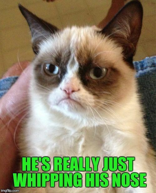 Grumpy Cat Meme | HE'S REALLY JUST WHIPPING HIS NOSE | image tagged in memes,grumpy cat | made w/ Imgflip meme maker