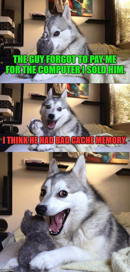 Bad memory |  THE GUY FORGOT TO PAY ME FOR THE COMPUTER I SOLD HIM. I THINK HE HAD BAD CACHE MEMORY. | image tagged in memes,bad pun dog,funny,computer,memory,humor | made w/ Imgflip meme maker
