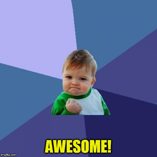 Success Kid Meme | AWESOME! | image tagged in memes,success kid | made w/ Imgflip meme maker