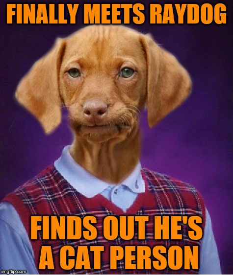 Bad Luck Raydog | FINALLY MEETS RAYDOG FINDS OUT HE'S A CAT PERSON | image tagged in bad luck raydog | made w/ Imgflip meme maker