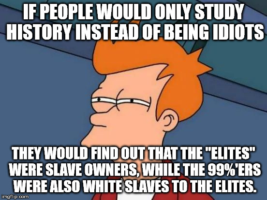 "Futurama Fry Reverse | IF PEOPLE WOULD ONLY STUDY HISTORY INSTEAD OF BEING IDIOTS THEY WOULD FIND OUT THAT THE ""ELITES"" WERE SLAVE OWNERS, WHILE THE 99%'ERS WERE A 