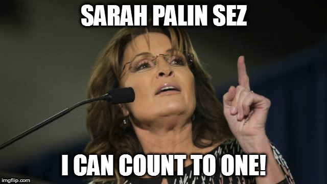 SARAH PALIN SEZ I CAN COUNT TO ONE! | image tagged in sarah palin can count | made w/ Imgflip meme maker