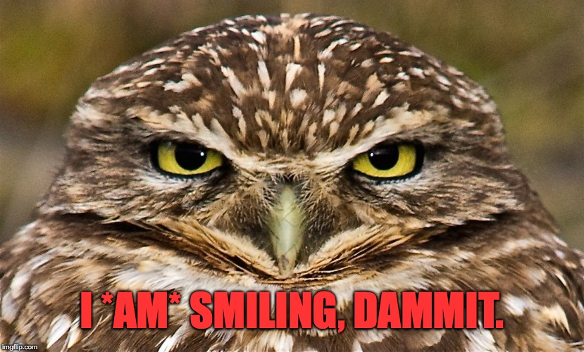 smiling | I *AM* SMILING, DAMMIT. | image tagged in dammit | made w/ Imgflip meme maker
