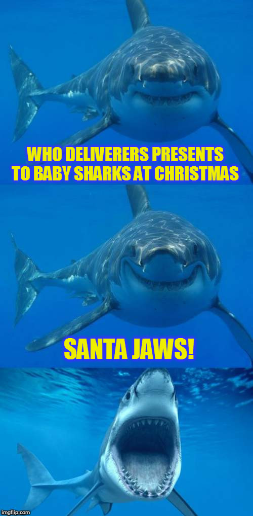 The 15 Christmas Memes Till Christmas Event  | WHO DELIVERERS PRESENTS TO BABY SHARKS AT CHRISTMAS SANTA JAWS! | image tagged in bad shark pun,christmas memes,sharks,santa,presents,funny memes | made w/ Imgflip meme maker