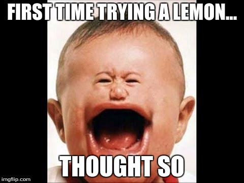 FIRST TIME TRYING A LEMON... THOUGHT SO | image tagged in lemon baby | made w/ Imgflip meme maker
