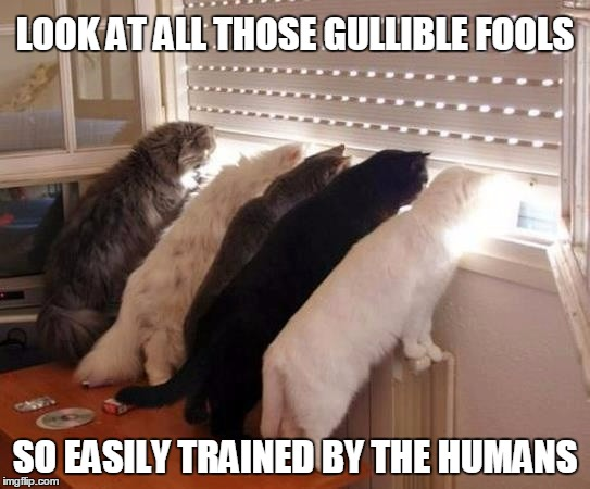 LOOK AT ALL THOSE GULLIBLE FOOLS SO EASILY TRAINED BY THE HUMANS | made w/ Imgflip meme maker