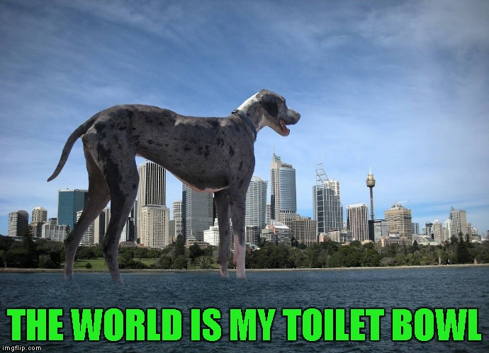 THE WORLD IS MY TOILET BOWL | made w/ Imgflip meme maker