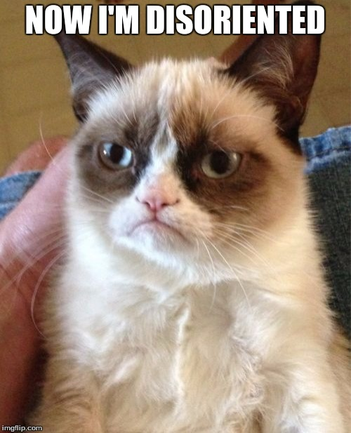 Grumpy Cat Meme | NOW I'M DISORIENTED | image tagged in memes,grumpy cat | made w/ Imgflip meme maker