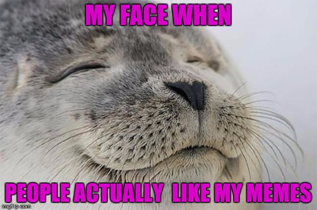 my face when | MY FACE WHEN PEOPLE ACTUALLY  LIKE MY MEMES | image tagged in memes,satisfied seal | made w/ Imgflip meme maker