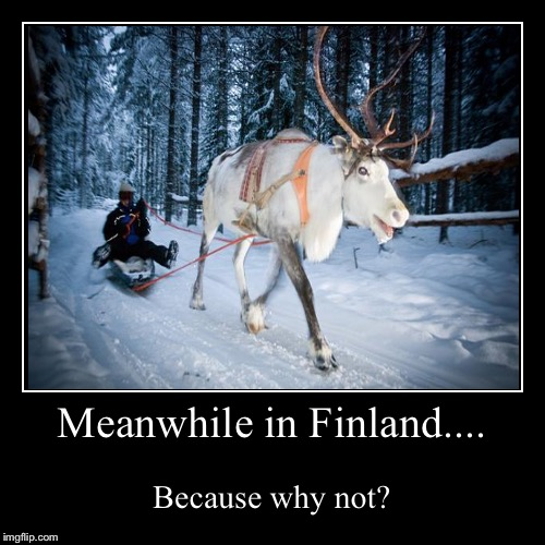 Meanwhile in Finland.... | Because why not? | image tagged in funny,demotivationals | made w/ Imgflip demotivational maker