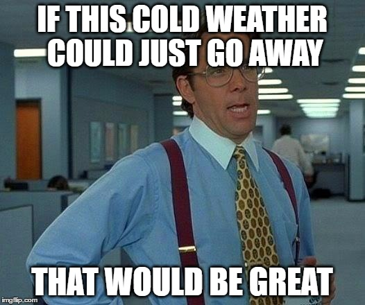 can't stand this polar vortex in the midwest | IF THIS COLD WEATHER COULD JUST GO AWAY THAT WOULD BE GREAT | image tagged in memes,that would be great,polar vortex,midwest | made w/ Imgflip meme maker