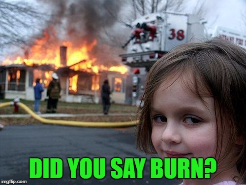 Disaster Girl Meme | DID YOU SAY BURN? | image tagged in memes,disaster girl | made w/ Imgflip meme maker