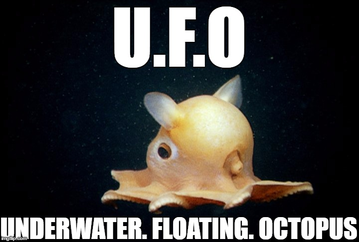 1fv4cb image tagged in ufo,meme,memes imgflip