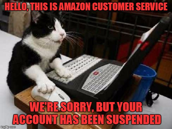 HELLO, THIS IS AMAZON CUSTOMER SERVICE WE'RE SORRY, BUT YOUR ACCOUNT HAS BEEN SUSPENDED | made w/ Imgflip meme maker