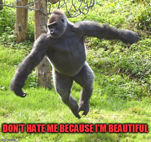 DON'T HATE ME BECAUSE I'M BEAUTIFUL | made w/ Imgflip meme maker