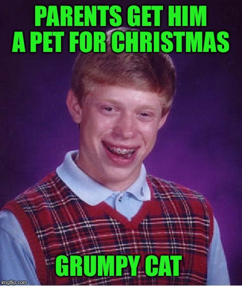 Bad Luck Brian Meme | PARENTS GET HIM A PET FOR CHRISTMAS GRUMPY CAT | image tagged in memes,bad luck brian | made w/ Imgflip meme maker