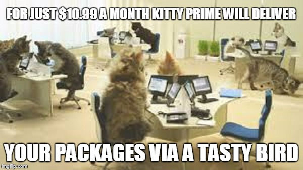 FOR JUST $10.99 A MONTH KITTY PRIME WILL DELIVER YOUR PACKAGES VIA A TASTY BIRD | made w/ Imgflip meme maker