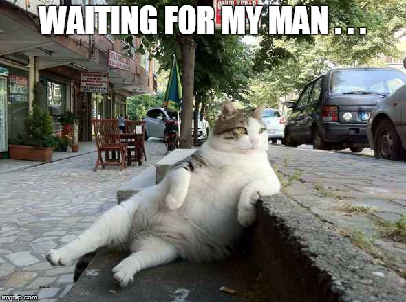 WAITING FOR MY MAN . . . | made w/ Imgflip meme maker
