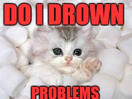 marshmallow kitty | DO I DROWN PROBLEMS | image tagged in marshmallow kitty | made w/ Imgflip meme maker