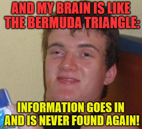 10 Guy Meme | AND MY BRAIN IS LIKE THE BERMUDA TRIANGLE: INFORMATION GOES IN AND IS NEVER FOUND AGAIN! | image tagged in memes,10 guy | made w/ Imgflip meme maker