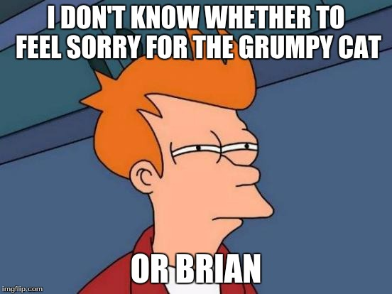 Futurama Fry Meme | I DON'T KNOW WHETHER TO FEEL SORRY FOR THE GRUMPY CAT OR BRIAN | image tagged in memes,futurama fry | made w/ Imgflip meme maker