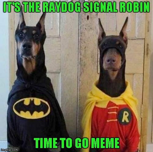IT'S THE RAYDOG SIGNAL ROBIN TIME TO GO MEME | made w/ Imgflip meme maker