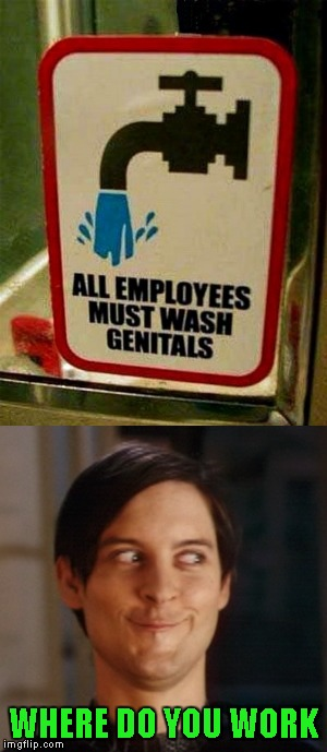 I'm really curious what this job is... |  WHERE DO YOU WORK | image tagged in funny signs,memes,funny,tobey maguire,signs | made w/ Imgflip meme maker