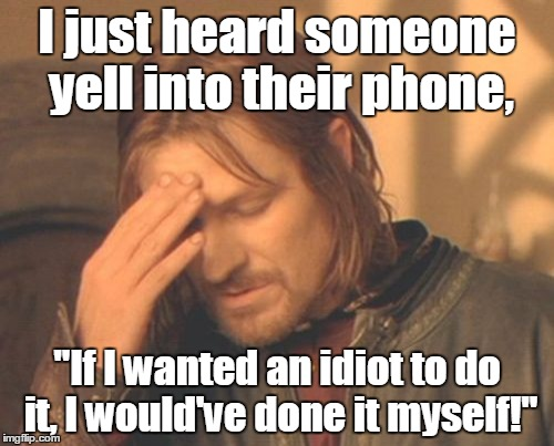 "Frustrated Boromir Meme | I just heard someone yell into their phone, ""If I wanted an idiot to do it, I would've done it myself!"" 