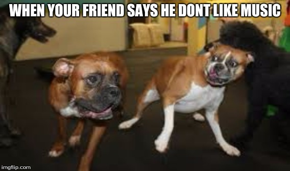when your friend says | WHEN YOUR FRIEND SAYS HE DONT LIKE MUSIC | image tagged in music,doggos | made w/ Imgflip meme maker