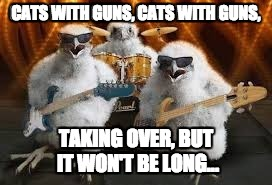 CATS WITH GUNS, CATS WITH GUNS, TAKING OVER, BUT IT WON'T BE LONG... | made w/ Imgflip meme maker