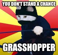 YOU DON'T STAND A CHANCE GRASSHOPPER | made w/ Imgflip meme maker