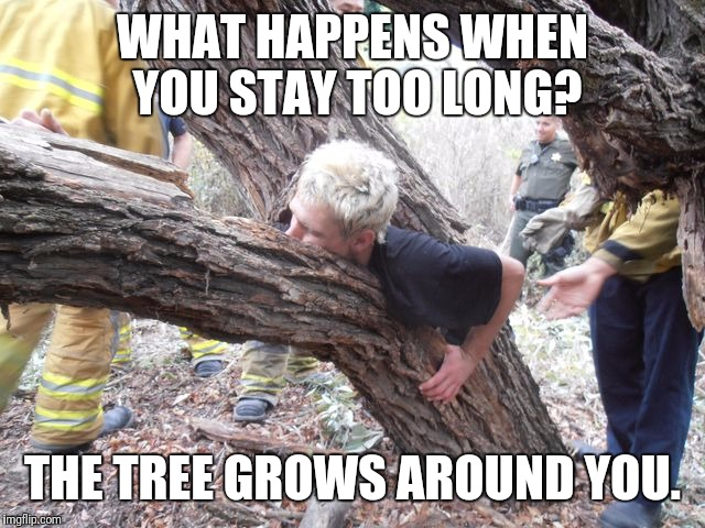 WHAT HAPPENS WHEN YOU STAY TOO LONG? THE TREE GROWS AROUND YOU. | made w/ Imgflip meme maker