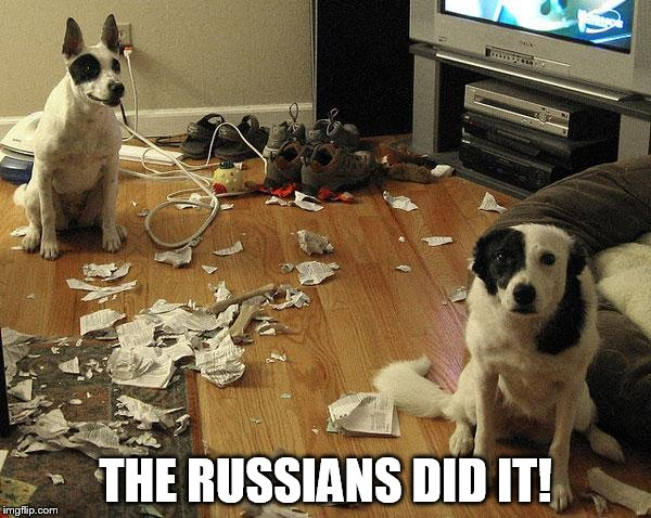guiltydogs | THE RUSSIANS DID IT! | image tagged in guiltydogs | made w/ Imgflip meme maker