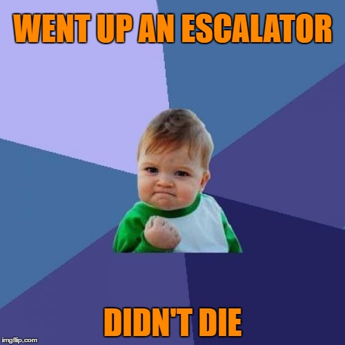 Conquering random fears one strange thing after another. | WENT UP AN ESCALATOR DIDN'T DIE | image tagged in sucess kid,memes | made w/ Imgflip meme maker