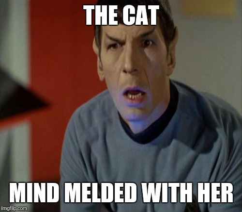 THE CAT MIND MELDED WITH HER | made w/ Imgflip meme maker