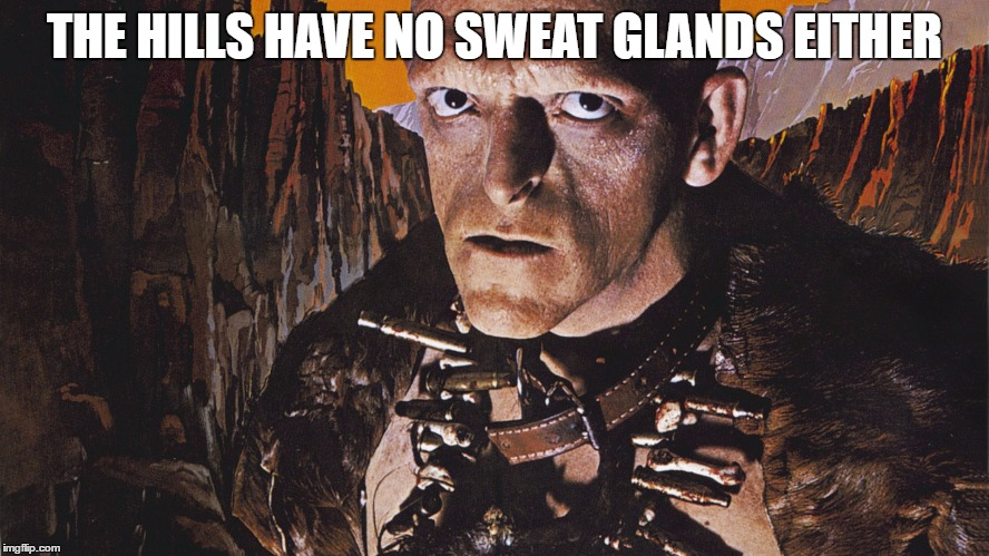 THE HILLS HAVE NO SWEAT GLANDS EITHER | made w/ Imgflip meme maker